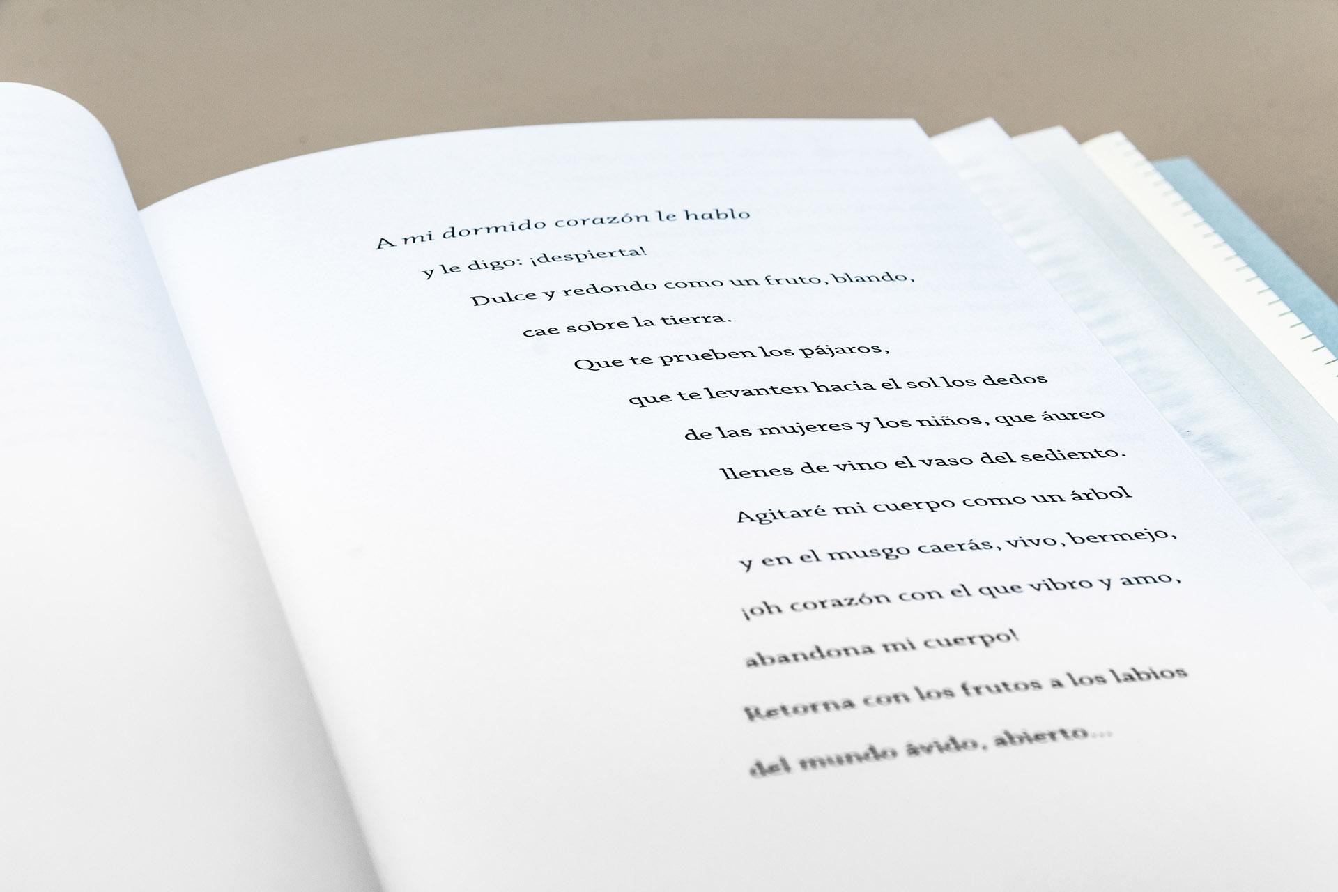 poemas-ida-gramcko-56