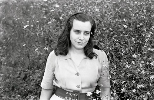 Foto de Alfredo Cortina perteneciente al Archivo Fotografía Urbana.
